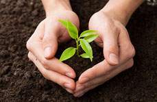 土壤污染防治法将会促进我国土壤污染防治事业飞速发展